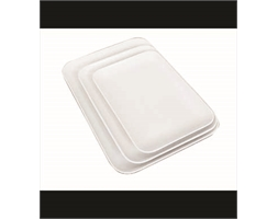 Rect Platter Large White 340x240x25